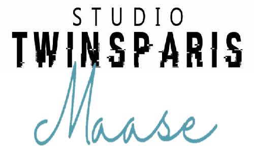 Silver Innov' | Pépinière d'entreprises dédiée à la Silver Économie | Logo Studio Twinsparis