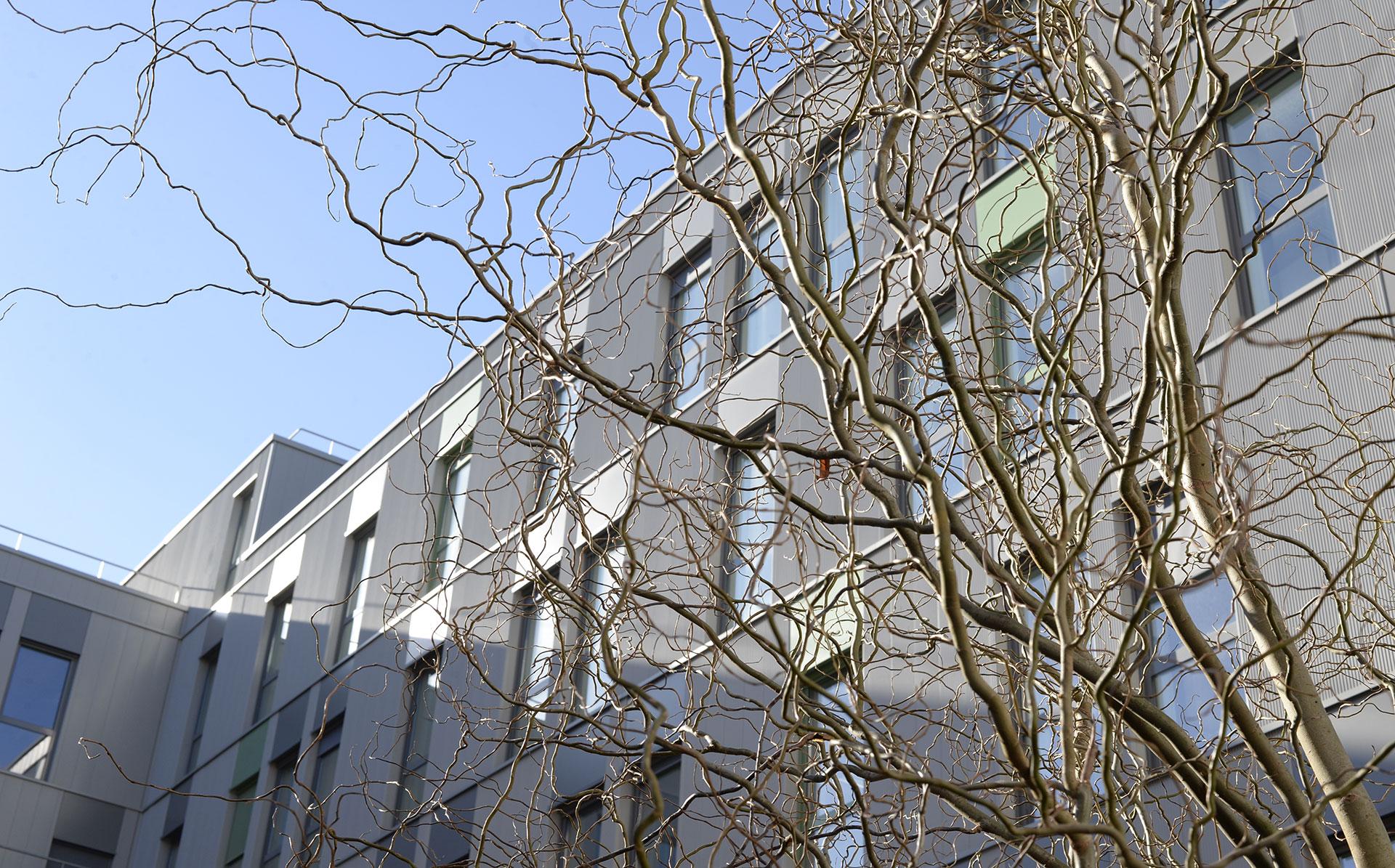 Immeuble Silver Innov'